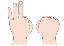 Fingerbild drei